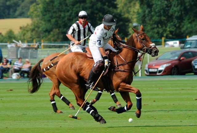 Ayudas Naturales Para Jugar Al Polo