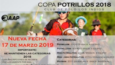Copa Potrillos 2019 - Horses